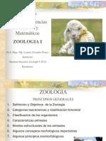 zoologia 1.pdf