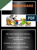 agressividade-100529144002-phpapp01.pptx