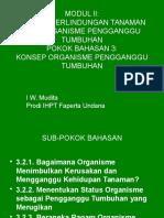 modul2_pb3, konsep_OPT.pptx