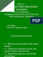 Modul1 Pb1, Permasalahan Artipenting Perlintan