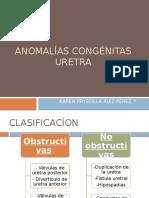 ANOMALÍAS CONGÉNITAS URETRA