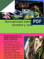 Normatividad Sobre Fauna Silvestre y Caza