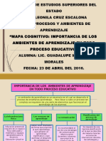 Marcos Morales Guadalupe Mapa Cognitivo