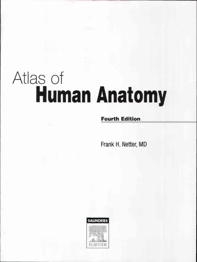 Atlas Human Anatomy Ciba Netter Vertebra Human Head And Neck