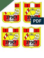 logo pepin.docx