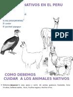 Animales Nativos en El Peru