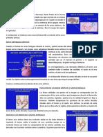 Conferencia 2.pdf