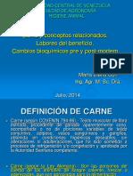 Carnes Presentacion