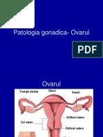 10) Ovarul. Infertilitatea. - Ppt