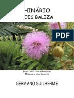 Germano Guilherme - Sois Baliza
