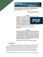 A Questão Agrária e a Relação Capitalista de Produção No Campo Brasileiro - o Caso Do Estatuto Da Terra - Marize Rauber Engelbrecht - 2011