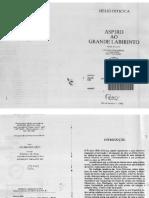 Aspiro ao Grande Labirinto - Helio Oiticica.pdf