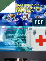 Inmunologia de Los Trasplantes