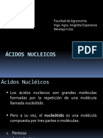 6._acidosnucleicos_2016