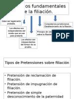 Principios Fundamentales de La Filiación