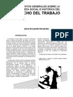 4._Lineamientos_generales_sobre_la_naturaleza_social_e_historica_del_derecho_del_trabajo_4.pdf