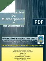 Investigación de Microorganismos