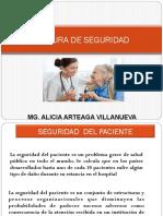 cultura de seguridad2.ppt ULTIMO.pdf