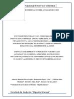 Proyecto de Investigación Del Año Academico 2015