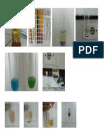 GAmbar Prak Biokimia 1