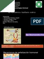 Eje Hipotalamo Hipofisis Ovario FINAL2
