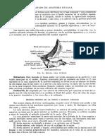 Tratado de Anatomia Humana Quiroz Tomo I_112