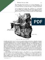 Tratado de Anatomia Humana Quiroz Tomo I_123