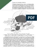 Tratado de Anatomia Humana Quiroz Tomo I_124