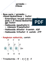 BIOLOGI SEL...sintesis-protein.ppt