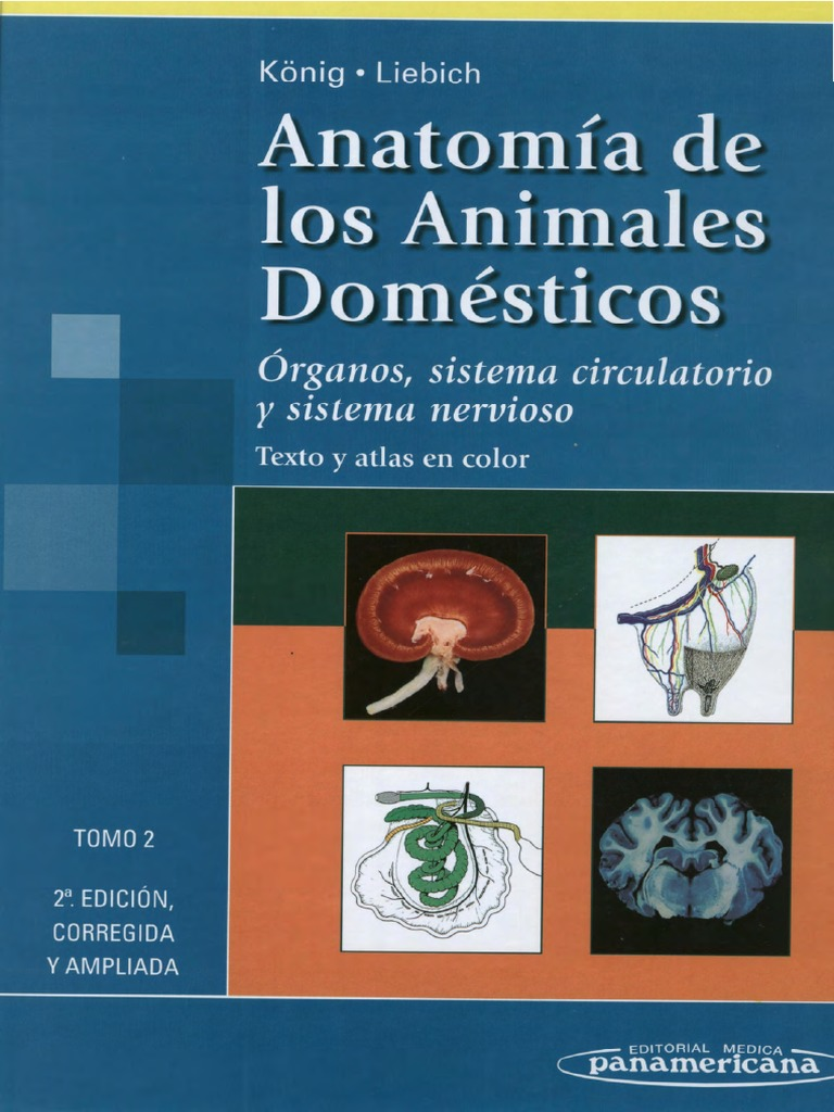 Anatomia Veterinaria - Konig TOMO 2