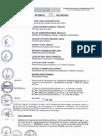 INFORME N° 110-2016-OEFA-DS
