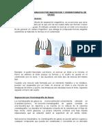 METODOS DE SEPARACION POR IMANTACION Y CROMATOGRAFIA DE GASES