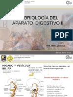 Clase Para Entorno Virtual Tejido Digestivo II