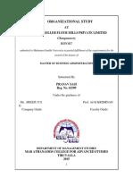 Organisation Study Nirapara Complte Report