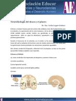 Neurobiologia Deseo Placer