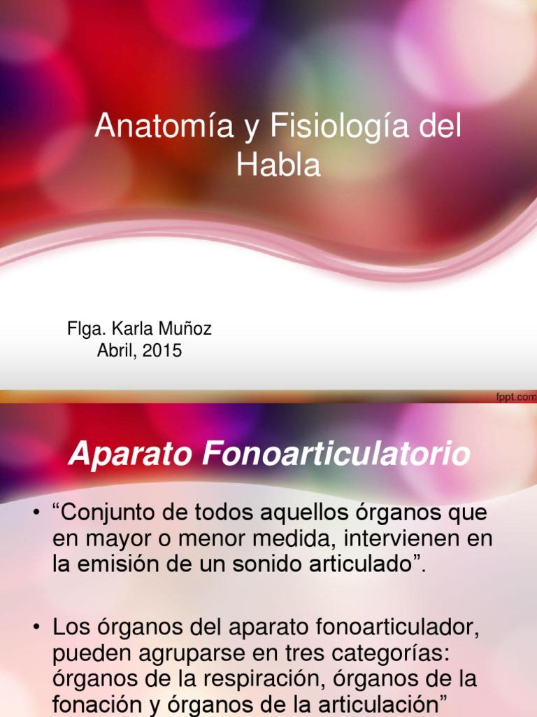 Anatomía y Fisiología Del Habla Clase II