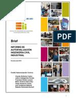 Brief Informe Autoevaluacion ICI-UBB
