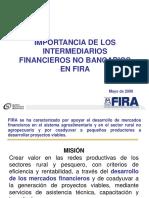 Importancia de Los IFNB en FIRA