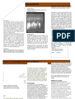 Practica 13. BBM DNA Plasmidico