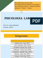 Psicologia Laboral Grupo 2