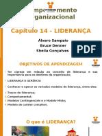 CAP 14 - REVISADO - Comp Organizacional.ppt