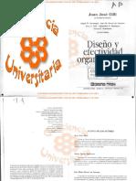 Diseñoy Efectividad Organizacional - Gilli