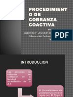 Cobranza Coactiva