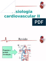 Sistema Cardiaco 2 Completo