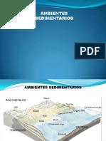 AMBIENTE SEDIMENTARIO.pdf