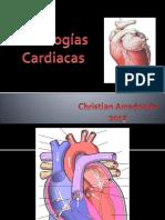 Clase Cardio Pato 2015 (1)