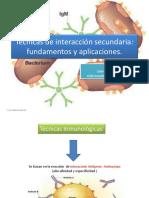 Técnicas de Interacción Secundaria_ Fundamentos y Aplicaciones
