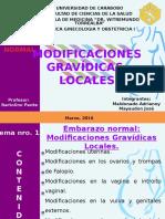Modificaciones Gravídicas Locales