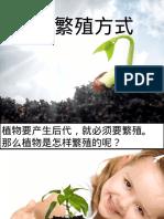 植物的繁殖法.ppt