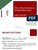 Relato de Caso - Rins e Vias Urinárias de Anatomia Patológica